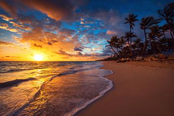 Landscape of paradise tropical island beach, sunrise shot Wall mural