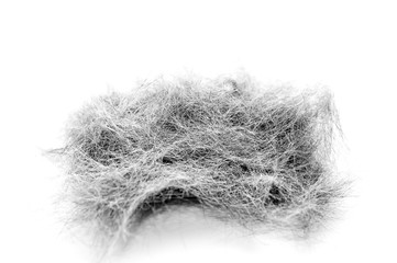 Macro Image of Black and White Cat Hair Collected After Grooming Session. Isolated on White Background.