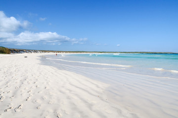 White sand beach at Tortuga Bay, Puerto Ayora, San Cristobal, Galapagos Islands, Ecuador, South America.