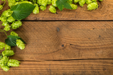 Rustic background with hops vine border