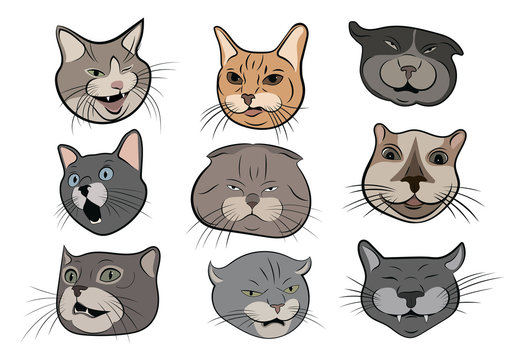 Set of funny cats. Collection of portraits of crooked cats. Cat head cartoon. Vector illustration of pets.