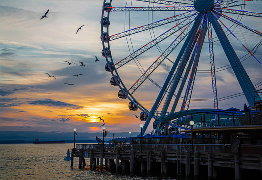Ferris Wheel on coast of Seattle at Sunset with Birds