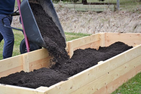 Filling up newly constructed raised garden boxes with soil