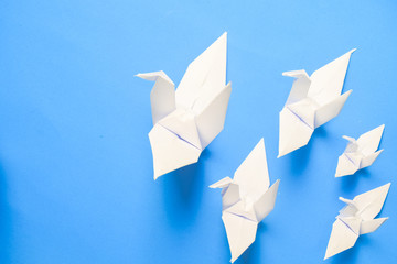 origami birds are flying on blue sky background. freedom concept.