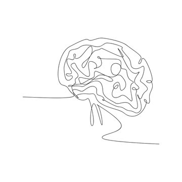 continuous line drawing of brain. isolated sketch drawing of brain line concept. outline thin stroke vector illustration