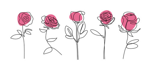 Rose flower continuous line drawing Minimalism floral botanical garden vector illustration. Single hand drawn set element collections.