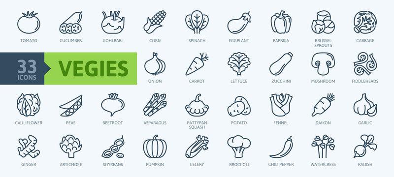 Vegetarian, vegetable, veggies - minimal thin line web icon set. Included the simple vector icons as tomato, cucumber, kohlrabi, cauliflower, pattypan squash, fiddleheads,daikon. Outline icons collect