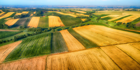 Drone aerial view - fields on the morning