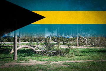 Trees broken by heavy storms and flag of Bahamas. Digital composition