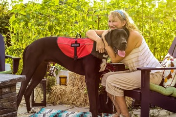 Older adult Caucasian woman with mobility issue is able to enjoy the outdoors on her patio with the help of her loyal and attentive Great Dane service dog by her side