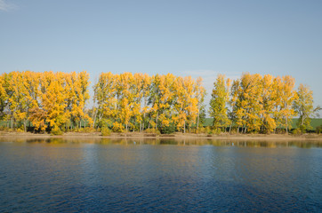 beautiful autumnal nature