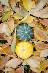 Halloween pumpkin decoration aerial view