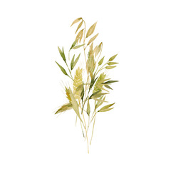 Watercolor wheat ears pattern.Image of ears of wheat on a white and colored background.