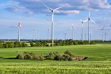 Wind turbines behind a green corn field seen in Germany