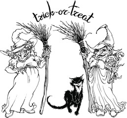 Vector witches with brooms and black cat. Halloween decor . Trick or treat