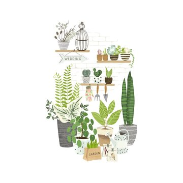 Set of plants in pots, cacti and succulents on shelf, gardening tools. Cultivating home garden, showcase garden or flowers shop, greenhouse. Flat cartoon vector illustration.