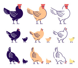 Chickens flat vector illustrations set. Multicolor chicks, hens and and rooster pecking cartoon design elements with outline. Chicken meat production, bird breeding. Poultry farm, animal husbandry