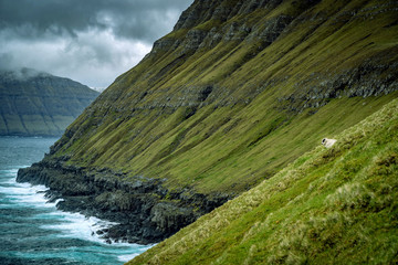Dramatic seascape with tall cliffs on Faroe Islands in stormy weather.