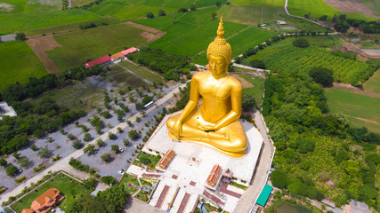 Wall Mural - Golden buddha statue in buddhism temple with rice plantation