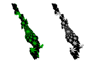 Kayin State (Administrative divisions of Myanmar, Republic of the Union of Myanmar, Burma) map is designed cannabis leaf green and black, Karen State map made of marijuana (marihuana,THC) foliage....