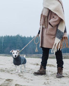 Young girl walks with a dog on the beach.