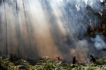 Firefighters help to put out a forest fire next to A1 motorway near Fontao