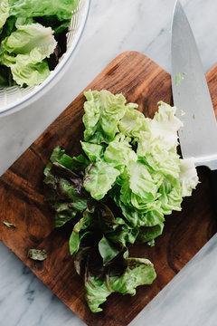 Chopped Butter Lettuce