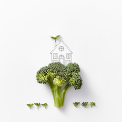 Painted house and broccoli cabbage in the form of a tree and bus