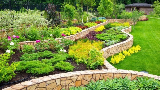 Landscaping panorama of home garden. Landscape design with plants, flowers and stone in backyard.