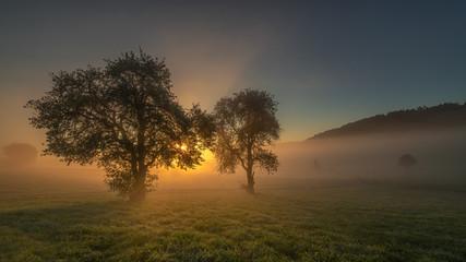 Herbstlicher Sonnenaufgang mit Nebel 10.2018
