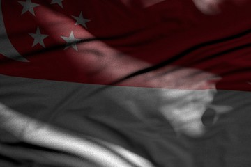 pretty image of dark Singapore flag with folds lying flat in shadows with light spots on it - any occasion flag 3d illustration..