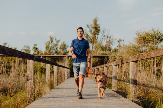 Happy adult man walking with dog along countryside