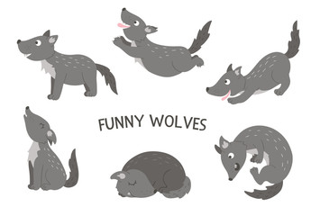 Vector set of cartoon style hand drawn flat funny wolves in different poses. Cute illustration of woodland animals for children's design. .
