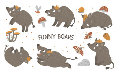 Vector set of cartoon style hand drawn flat funny boars in different poses. Cute illustration of woodland animals for children's design. .
