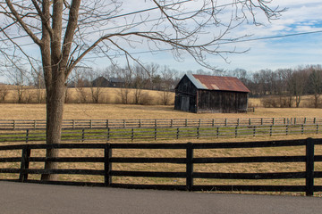 Field with barn and pasture in picture