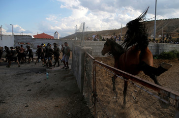 A horse gives a kick as revellers run during the annual Cascamorras festival in Baza
