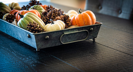Table Centerpiece of Fall Harvest in Metal Tray