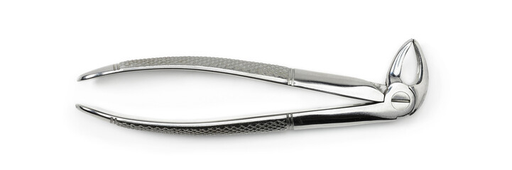 Dentist equipment: Premolar dental extraction forceps, real stainless steel tool. Dental tool isolated on white background, closeup.