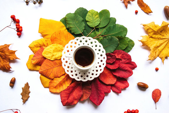 A cup of black tea on the background of colorful leaves, acorns and rowan berry. Autumn design.