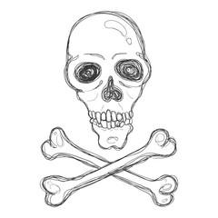 Vector Hand Drawn Sketch Skull and Crossbones.