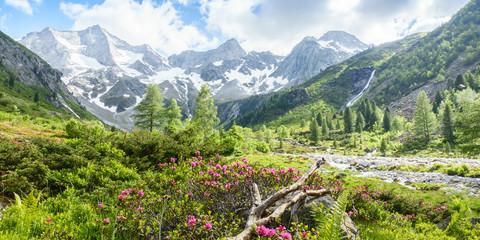 Fotobehang Pistache herrliches Panorama einer Berglandschaft mit Gletscher im Hintergrund