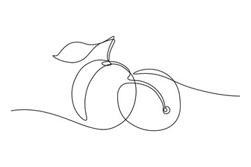 Plum fruits in continuous line art drawing style. Minimalist black line sketch on white background. Vector illustration