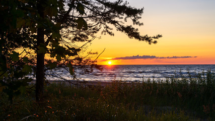 beautiful sunset over Baltic sea shore in summer evening, relaxing view on nature