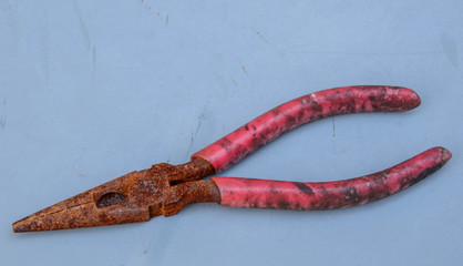 Rusty needle nose pliers with red moldy handle
