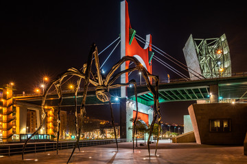 Night view of Maman giant spider sculpture on the walkway of Guggenheim Museum with La Salve Bridge in the background, Bilbao, Basque Country, Spain