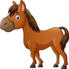 Fotobehang Pony Cute horse pony cartoon. vector illustration