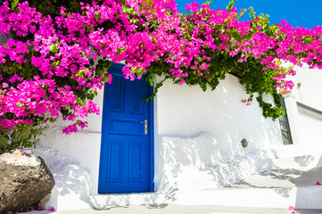 Aluminium Prints Santorini White cycladic architecture with blue door and pink flowers of Bougainvillea on Santorini island, Greece.