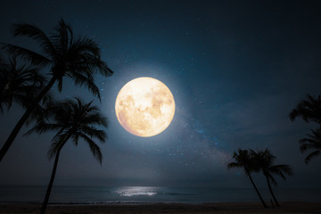 Wall Mural - Romantic night scene - beautiful fantasy tropical beach with star and full moon in night skies.