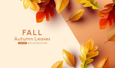 Autumn Fall Background Design