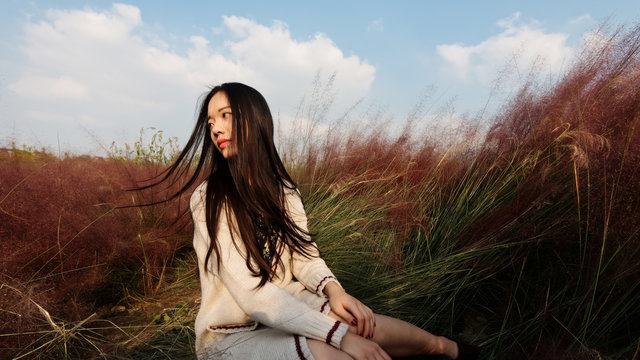 Portrait of beautiful young Chinese woman wearing white sweater dress sitting in the pink hairawn muhly field, shaking her head enjoy the wind.